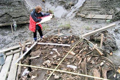 Найдены следы загадочных предков человека